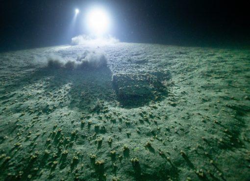 OP642 lac léman munitions immergées